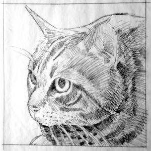 "12"" x 12"" pencil drawing"