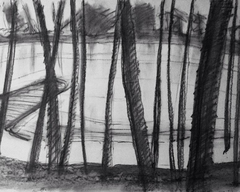 "12"" x 18"" graphite on paper"